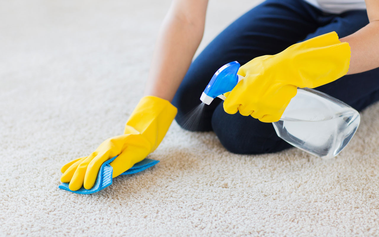 Top 6 Things to Consider Before Hiring Professional Carpet Cleaners